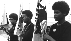 Black Panthers Against Patriarchy